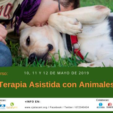 Curso Terapia Asistida con Animales